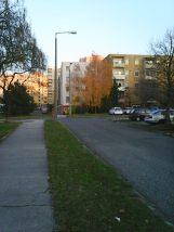 photo6235