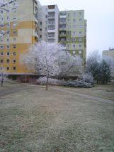 photo6684