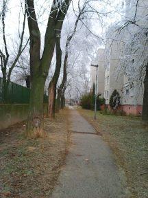 photo6686