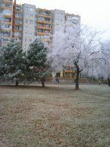 photo6696