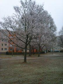 photo6700