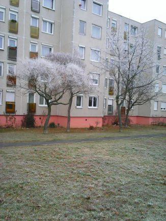 photo6714
