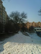 photo6779