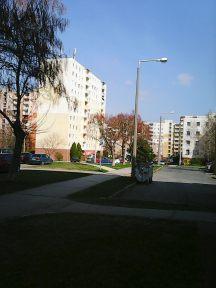 Photo7419