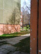 Photo7425