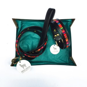 leash and collar set