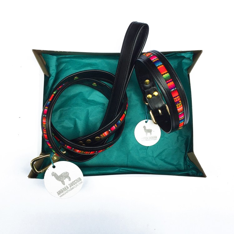 leash and collar set