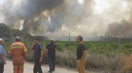 Compromís per Paterna vol vigilar La Vallesa amb brigades ciutadanes