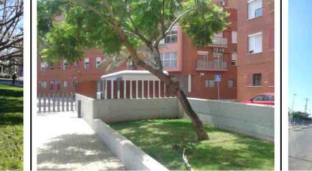 Xirivella substitueix 14 arbres perillosos per risc de caiguda