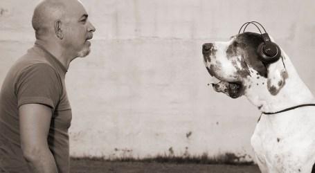 150 gossos podran disfrutar a Rafelbunyol d'un concert per a ells