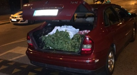 La Policía Local de Paterna decomisa 12,6 kilos de hachís en el maletero de un vehículo