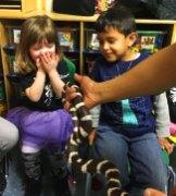 preschool-snake