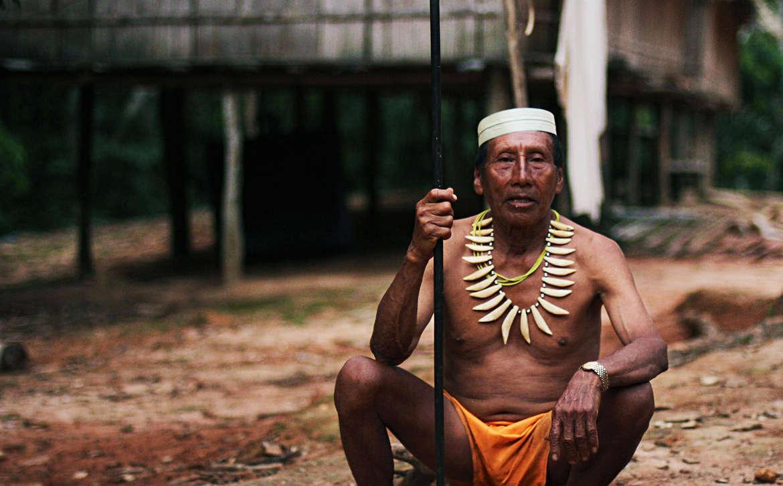 TRIBU AMAZÓNICA CREA UNA ENCICLOPEDIA DE MEDICINA TRADICIONAL…Y LA OCULTA A LAS FARMACÉUTICAS