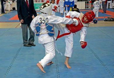 Los campeones acceden directamente al Mundial de Karate 2016 que se desarrollará en Bulgaria.