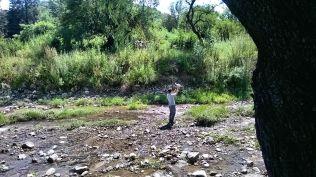 Río Ceballos