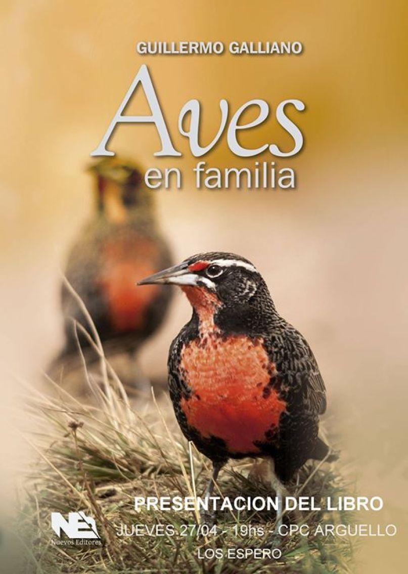 Aves en familia.jpg