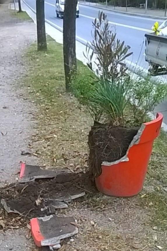Vandalismo en Paseo La Casona de Agua de Oro 1