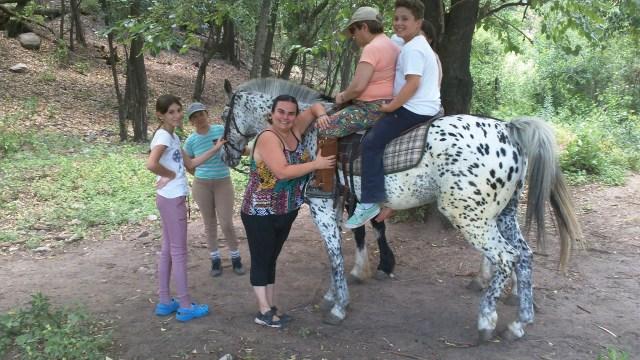 El caballo como terapeuta 2