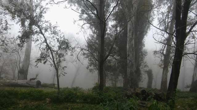 LA FOTO DEL DÍA: un manto de neblina en Villa Leonor 2