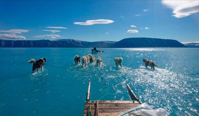LA FOTO DEL DÍA: retrato del deshielo en Groenlandia 2