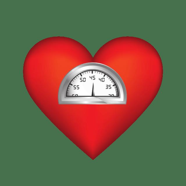 Mitos y verdades sobre la dieta en periodo de entrenamiento físico 15