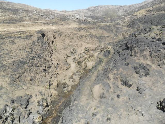 <strong><em>Los incendios en las cabeceras de cuencas deterioran gravemente el suelo, favoreciendo la escorrentía del agua en lugar de su absorción. </em></strong>Foto gentileza S. Chiavassa.