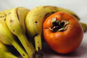 food leaf fall health