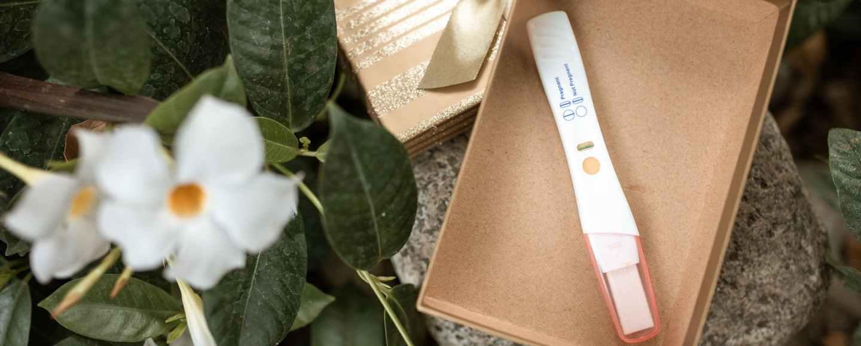 white flower beside brown box