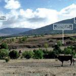 Los madrileños ya pueden conocer 'in situ' la vida en el Pleistoceno