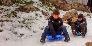 nieve trineos