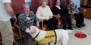 Terapias con animales para personas mayores