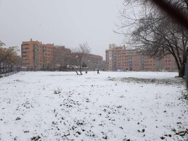 nieve en madrid 2021 parque hombre y perro