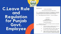 C.Leave Rule and Regulation for Punjab Govt. Employee