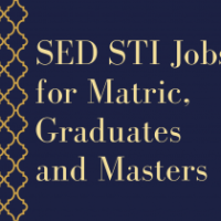 sed sti jobs for matric, graduates and masters