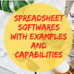 Spreadsheet Software with Examples and capabilities