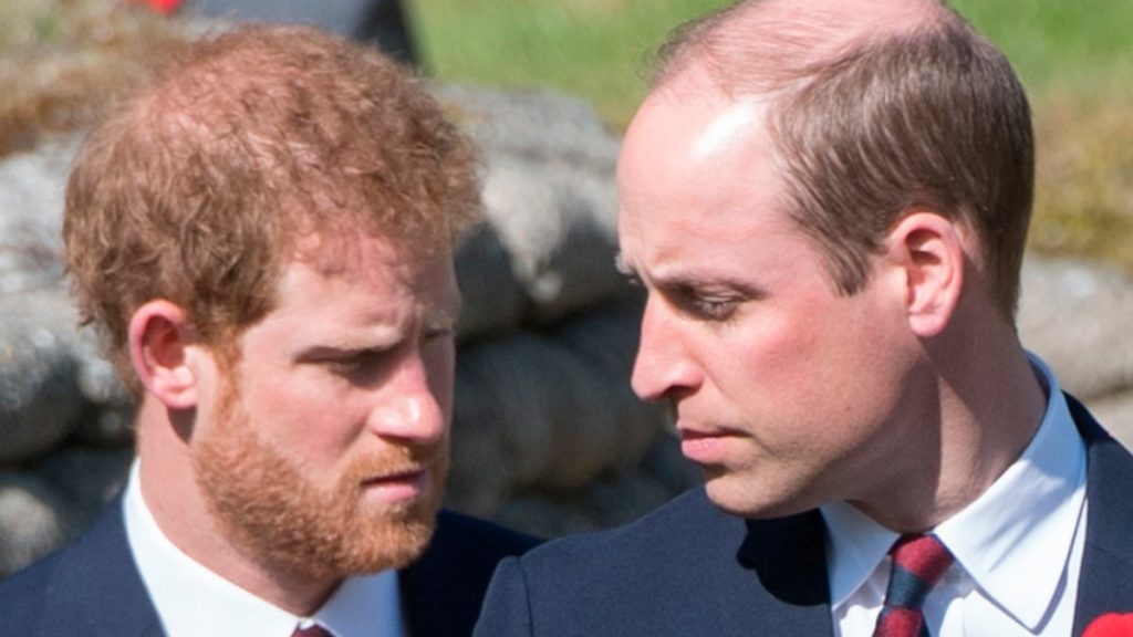 Principes-William-y-Harry