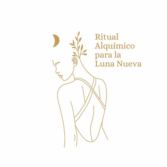 Rituales lunares disponibles en su página: www.lunalogia.com