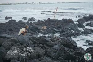 Foto de Chica mirando al mar desde las rocas