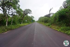 Foto de Carretera en la zona alta de Santa Cruz