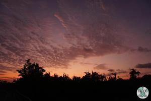 Foto de Puesta de sol desde Playa los Alemanes
