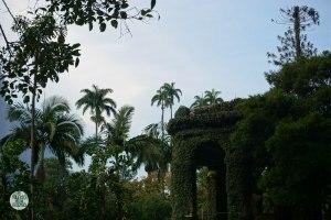 Pasiaje del Jardin Botánico de Rio de Janeiro
