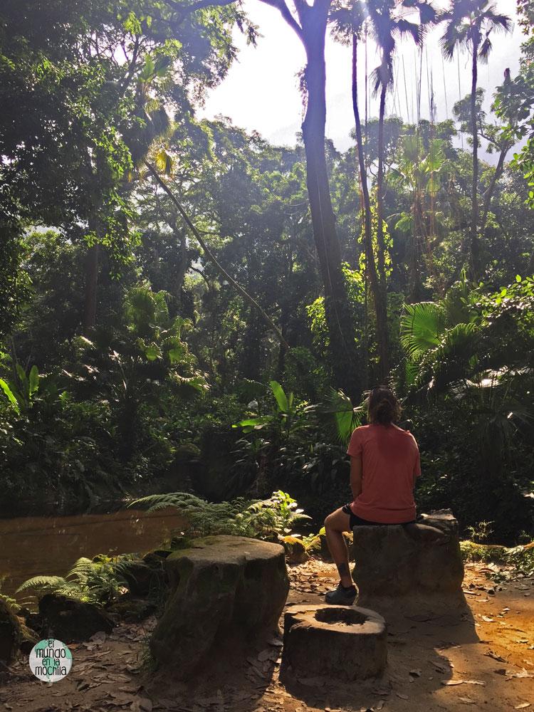 Un rincón precioso en el Parque Lage, desde donde parte la ruta senderista mochilera al Cristo de Corcovado