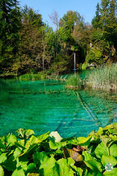 Los colores del agua son espectaculares en Plitvice