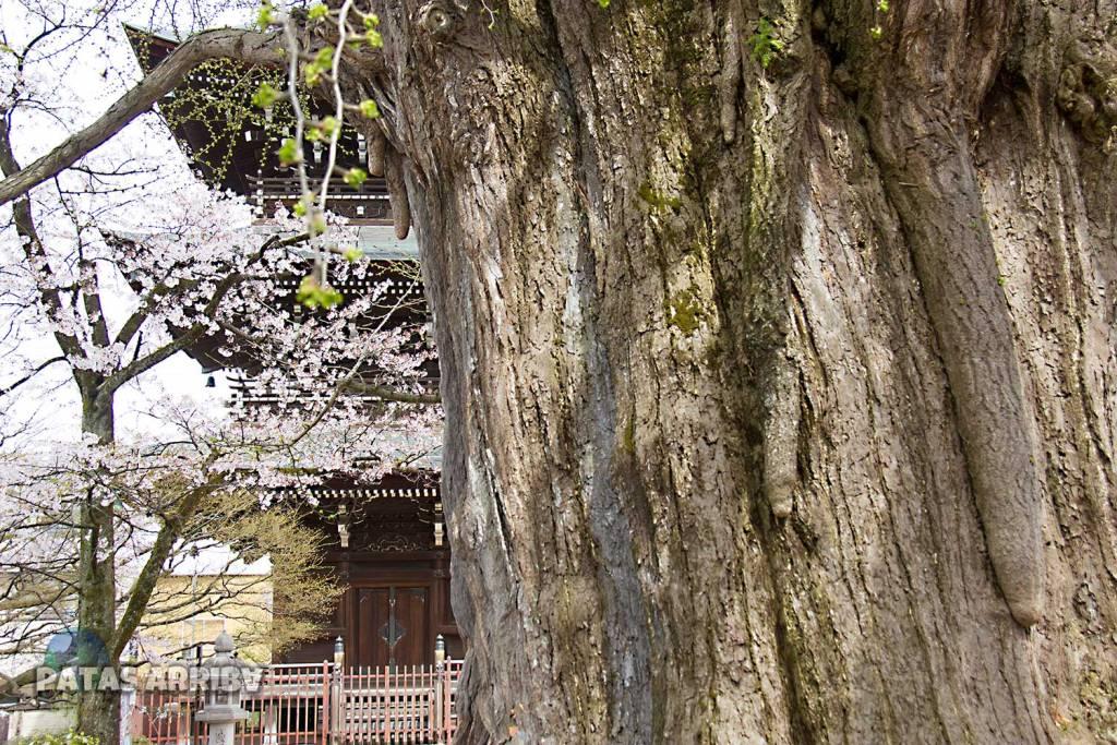 Templo Hida Kokubunji