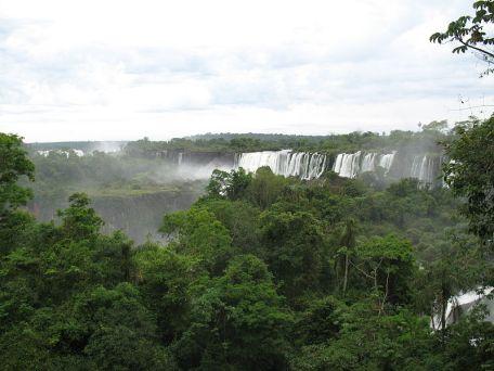La selva misionera (Argentina)