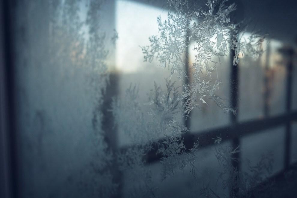 kvarnskogen_alboga_december_2106-12