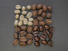 coffee beans 1082116 1280