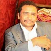 هاشم محمود حسن