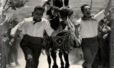 Los Caballos del Vino, historia de una superación