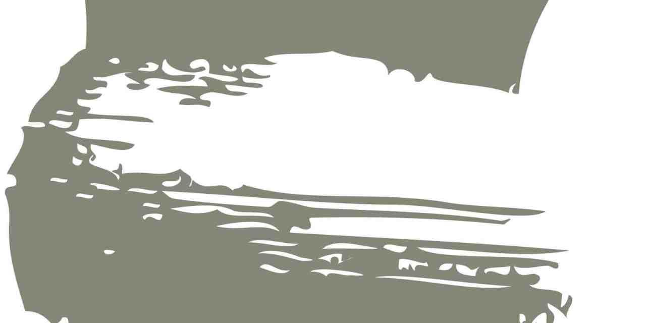 Arqueoterra: educación y cultura